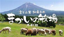 掛川ナイト前哨戦の提案