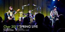 Char 2013 Spring Live  日比谷野外音楽堂