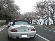 お花見 リベンジ (^^;)