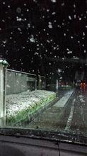 雪降ってるんですけど。