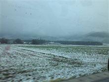 雪が・・・
