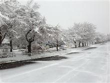 峠アタック rd.1 雪で中止