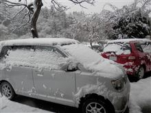 えっ うそ ほんとに 雪!