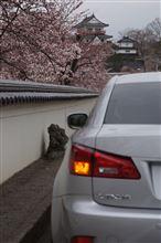 2013 桜と雲と雨