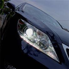 【試乗】Lexus LS460 (DBA-USF40-AEZQH)