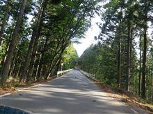 天竜スーパー林道