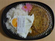 ESTA FOOD SUPPLE Hashimoto ハンバーグカレー