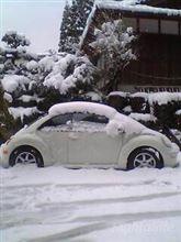 次期ファミリーカー候補車を300万円以下で考える。