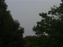 5月に梅雨入りとは^^;