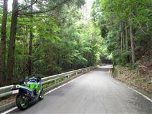 バイク笹子峠、御坂峠、スズラン群生地、大菩薩ライン