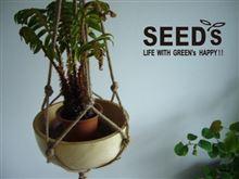 プラントハンガー seed's