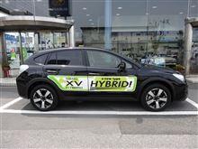 今、注目のハイブリッドカー <スバルXV、レクサスIS>