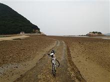 休みでしたのでサイクリングでも。