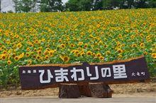 北海道の旅 8月5日 北竜町 ひまわりの里