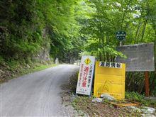 林道 金山志賀坂線...
