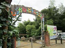 何かと驚きの動物園