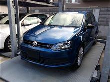 Polo Blue GT