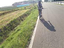 自転車徘徊