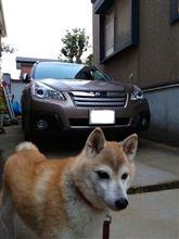 愛犬と新車