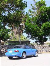 ロードスターで沖縄をドライブするさ~。
