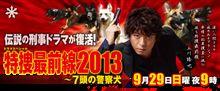 今夜放送!テレビ朝日系列「特捜最前線2013」に期待が高まる