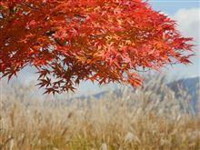 【ユーロ写真部主催】納車オフ & 信州撮影オフ ルートアンケート!!