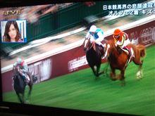 馬の世界一決定戦