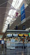 中部国際空港なう!