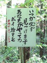 筑波山周辺部林道ドライブ
