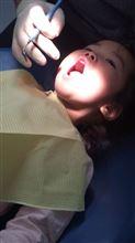 歯っ歯っ歯~