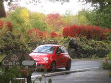FIAT PICNICも通過し、紅葉全開