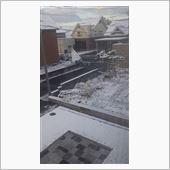 雪積もっちゃった~