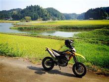 【納車1周年】YAMAHA WR250Xインプレ