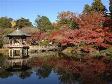 成田山へ紅葉狩り