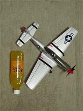 P-51 とうちゃくっ!  ヾ(=^▽^=)ノ