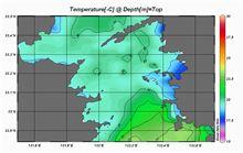 海水温が・・・Σ(|||▽||| )