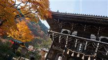 京都 善峯寺の紅葉
