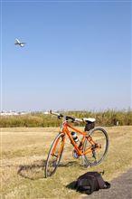 たまには自転車に乗りましょう