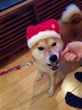 メリークリスマスの練習。