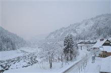 雪、降り続いてます・・・