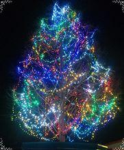 クリスマス・イヴ♪