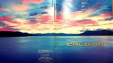 カルディナ21系前期のカタログ