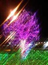 夜の『洞爺駅』が、なまら綺麗だわ( ´艸`)