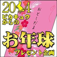 2014年ピカキュウからのお年球プレゼント企画!