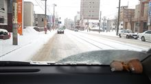 【トーヨータイヤ・ガリットG0体感モニター】氷結路面走行と奥さんの感想