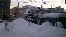 今年も雪が多いです(^^;