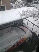 雪国でした(汗)