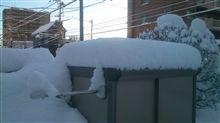 今朝は大雪でした(>_<)