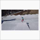 Dyspeptic ski  ...
