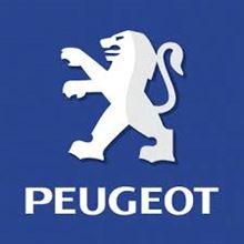 PEUGEOT208にも取付できます!!